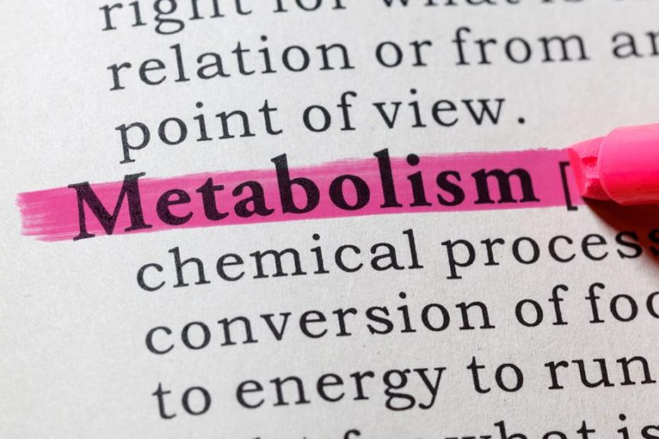 Fabbisogno calorico giornaliero e metabolismo: 3 consigli per dimagrire, significato